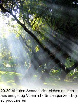 Sonnenlicht und Vitamin D